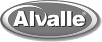professional translations for the company Alvalle