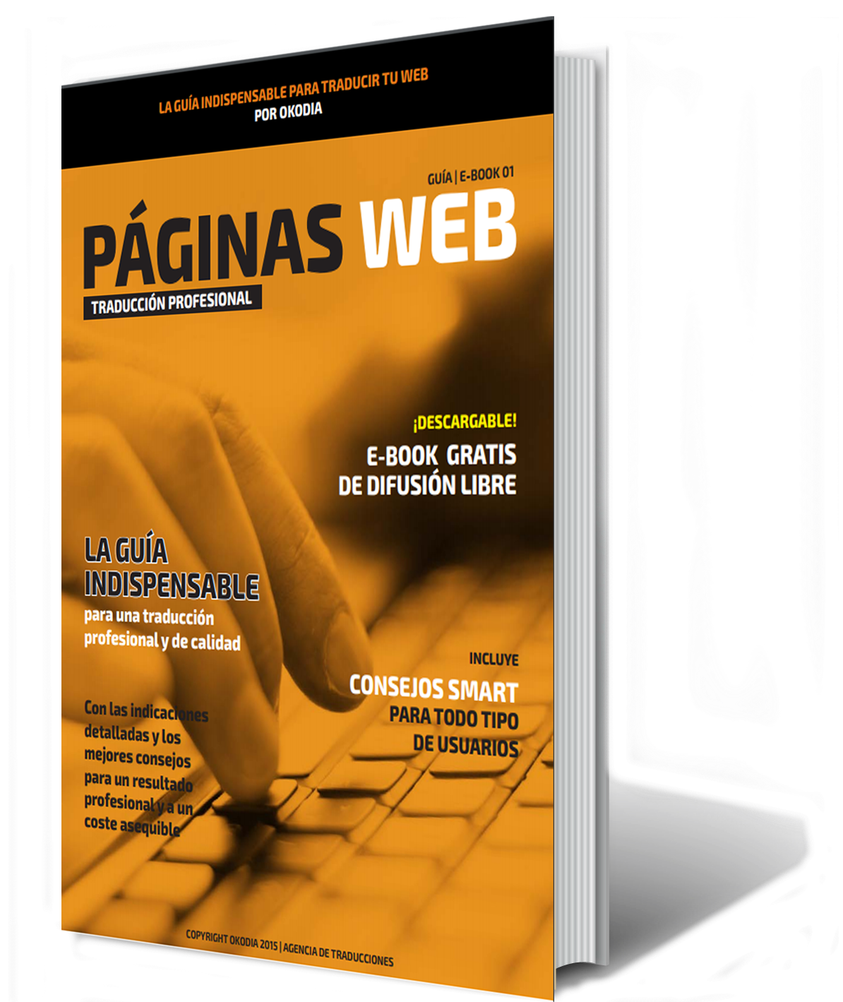 ebook1defi-paginasweb