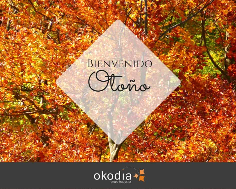 El otoño ha llegado a Okodia.